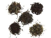 Schwarzer, grüner und weißer Tee Lizenzfreies Stockbild