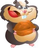 Schwarzer Hamster mit Walnuss Stockfotografie