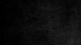 Schwarzer Hintergrund Stockbilder