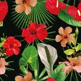 Schwarzer Hintergrund der roten Blumenblätter nahtlos stock abbildung
