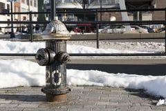 Schwarzer Hydrant (Landschaft) Lizenzfreies Stockfoto
