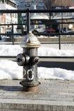 Schwarzer Hydrant (Porträt) Stockbilder