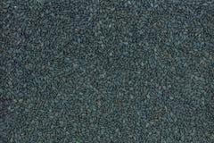 Schwarzer indischer Sesam Stockbilder