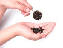 Schwarzer indischer Sesam in der Hand, lokalisiert auf Weiß Lizenzfreies Stockbild