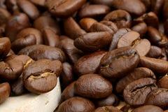 Schwarzer Kaffee Lizenzfreie Stockfotografie