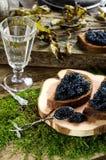 Schwarzer Kaviar und Wodka Abbildung der roten Lilie Stockfotografie