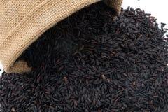 Schwarzer klebriger gaba Reis Stockbilder