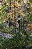Schwarzer Laternenpfahl und fogliage auf Central Park, New York Stockfoto