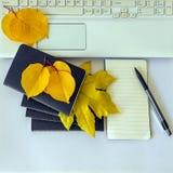 Schwarzer Notizblock für Anmerkungen und Gelb verlässt auf einem weißen Hintergrund Stockbild