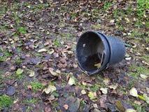 Schwarzer Plastikeimer vorbei gefallen auf Boden mit Blättern Lizenzfreie Stockfotografie