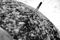 Schwarzer Regenschirm und weißer Schnee demgegenüber Lizenzfreie Stockbilder