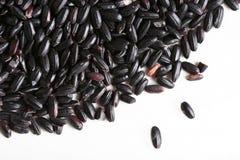 Schwarzer Reis Lizenzfreie Stockbilder