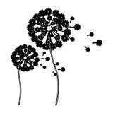 schwarzer Schattenbildlöwenzahn mit den Stamm- und Stempel- und Fliegenblumenblättern lizenzfreie abbildung