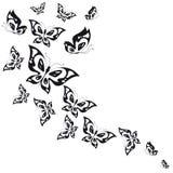 Schwarzer Schmetterling, lokalisiert auf einem Weiß Lizenzfreies Stockfoto