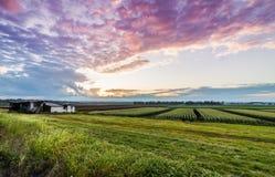 Schwarzer Schmutz-Sonnenuntergang Lizenzfreie Stockfotos