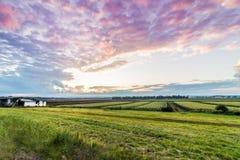 Schwarzer Schmutz-Sonnenuntergang Stockbild