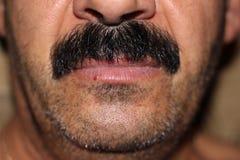 Schwarzer Schnurrbart Lizenzfreies Stockbild