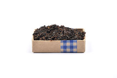 Schwarzer Tee Lizenzfreie Stockfotos