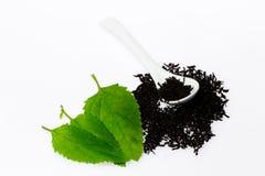 Schwarzer Tee mit Blatt Stockfoto