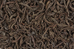 Schwarzer Tee treibt Beschaffenheit Blätter Stockbild