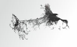 Schwarzer Vogel auf einem weißen Hintergrund stock abbildung