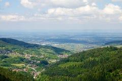 Schwarzer Waldpanorama Stockbilder