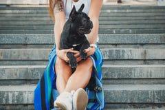 Schwarzer Welpe der französischen Bulldogge, der auf Treppe zwischen weiblichen Beinen sitzt lizenzfreie stockfotografie