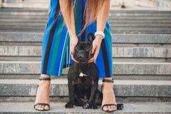 Schwarzer Welpe der französischen Bulldogge, der auf Treppe zwischen weiblichen Beinen sitzt stockfotografie