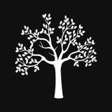 Schwarzes Baumschattenbild getrennt auf weißem Hintergrund lizenzfreie abbildung