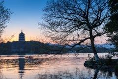 Schwarzes Baumschattenbild und Pagode des traditionellen Chinesen Stockbild