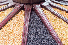 Schwarzes Bean und Sojabohne Stockbild