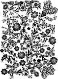 Schwarzes Blumenmuster auf Weiß vektor abbildung