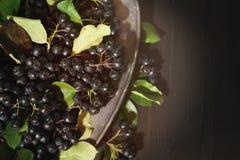 Schwarzes Chokeberrybeeren Aronia-melanocarpa auf metallischem Teller auf dunkler Tabelle lizenzfreies stockbild