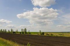 Schwarzes Feld mit B?umen weit weg Anbaufl?che landwirtschaft Heller blauer Himmel und gr?nes Gras lizenzfreie stockfotos