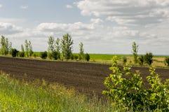 Schwarzes Feld mit B?umen weit weg Anbaufl?che landwirtschaft Heller blauer Himmel und gr?nes Gras stockbild