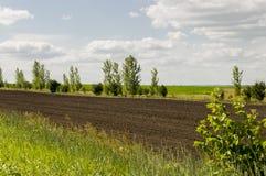 Schwarzes Feld mit B?umen weit weg Anbaufl?che landwirtschaft Heller blauer Himmel und gr?nes Gras stockbilder