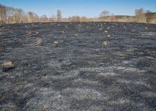 Schwarzes Feld nach dem Feuer lizenzfreie stockfotografie