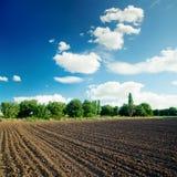 Schwarzes Feld und blauer Himmel mit Wolken Stockfotografie