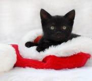 Schwarzes Kätzchen in einem Sankt-Hut Lizenzfreie Stockfotos
