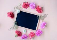 Schwarzes Kreidebrett mit frischer Gartennelkenblume auf weicher Cremerückseite Lizenzfreies Stockfoto