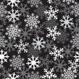Schwarzes Muster des Schnees Stockfotos