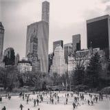 Schwarzes n-Weiß-Central Park Lizenzfreies Stockfoto