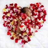 Schwarzes neugeborenes Baby, das in den rosafarbenen Blumenblättern schläft Lizenzfreie Stockfotografie
