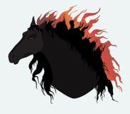 Schwarzes Pferd lizenzfreie abbildung