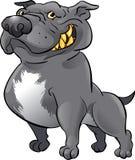 Schwarzes pitbull Stockfotografie