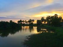 Schwarzes Schattenbild auf Bäumen bei Sonnenuntergang lizenzfreie stockbilder