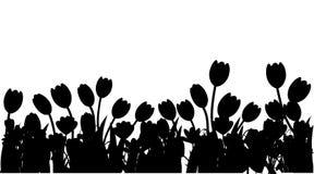 Schwarzes Schattenbild Fr?hling Tulpe, Krokus und Convallaria majalis Gr?nes Blumenmuster, Gras Konzept f?r Gru?karte oder lizenzfreie abbildung