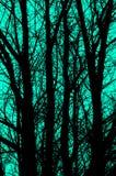 Schwarzes Schattenbild von Bäumen auf blauem Hintergrund Abstraktion und Hintergrund Lizenzfreies Stockbild