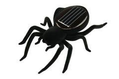 Schwarzes Spinnenspielzeug für Kinder Lizenzfreies Stockbild