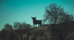 Schwarzes Stierschattenbild lizenzfreie stockfotos